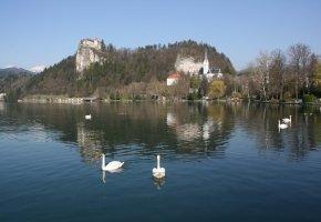 Château de Bled