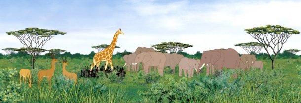 Savane d'Afrique, Kirikou