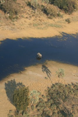 Delta de l'Okavanga